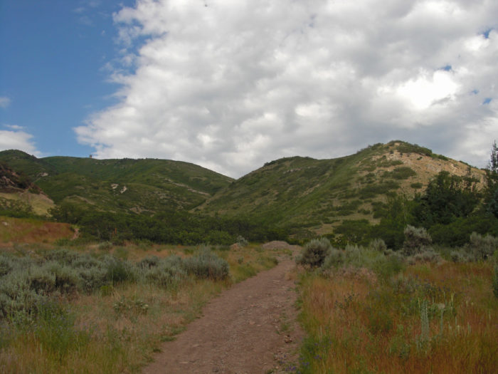 The foothills above Red Butte Garden provide some great hiking/biking opportunities.