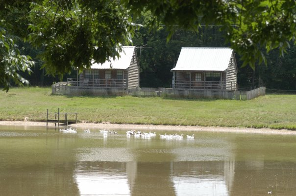 7. Pond Store Cabins, Woodville