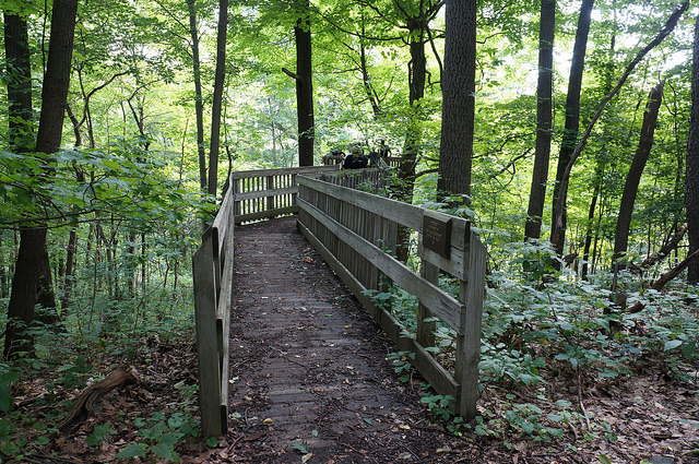 7. Beechwood Farms Nature Reserve – 614 Dorseyville Road, Pittsburgh