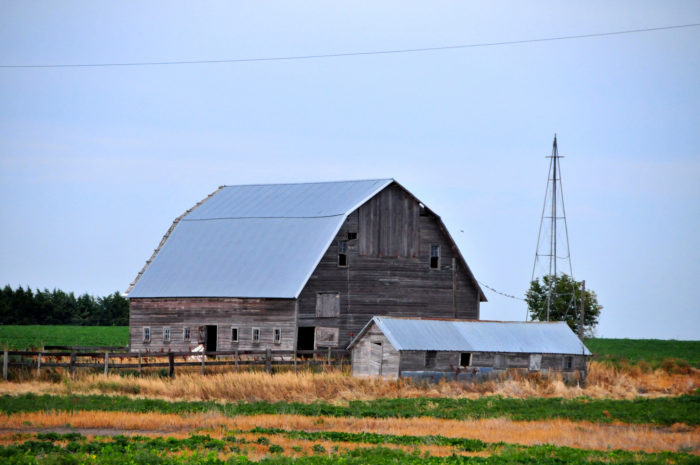 This area has a number of abandoned buildings, including this fading barn.