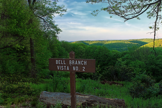 Arrive at Bell Branch Vista for...