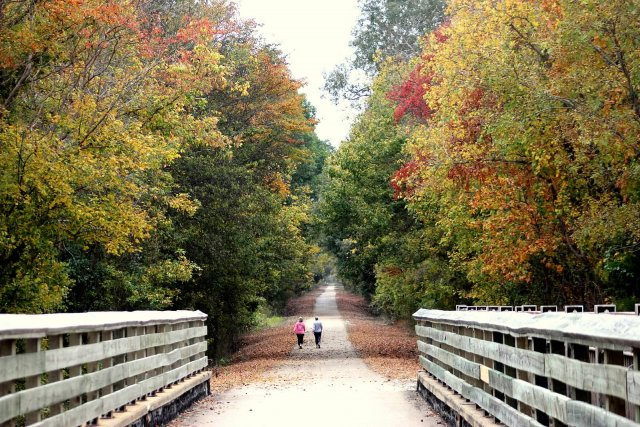 8. Tanglefoot Trail, New Albany to Houston, MS