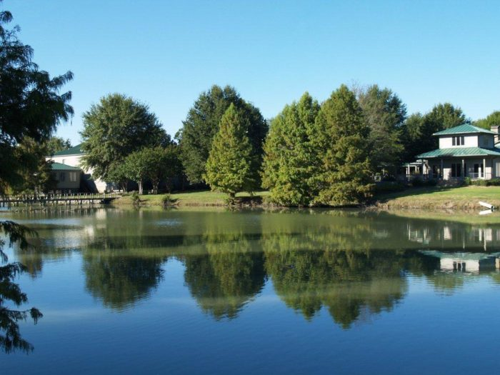 There's a variety of lodging accommodations at Tara Wildlife, including several cabins and Tara Lodge.