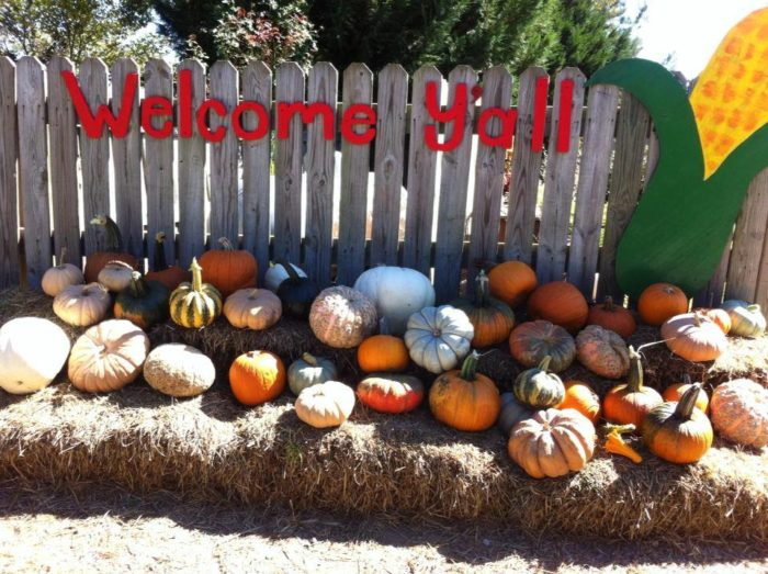 8. Bull Bottom Farms, Duck Hill