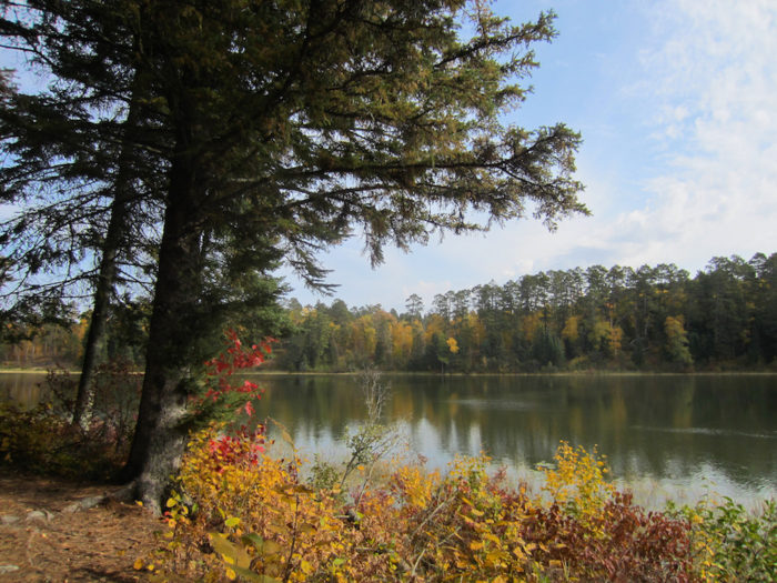 6. Dr. Roberts Trail in Itasca State Park - 2 miles