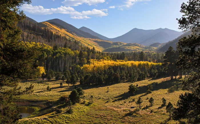 Other spots like Lockett Meadow, Hart Prairie, or the Snowbowl show off the fall colors as welll and offer even more hiking and recreation opportunities.