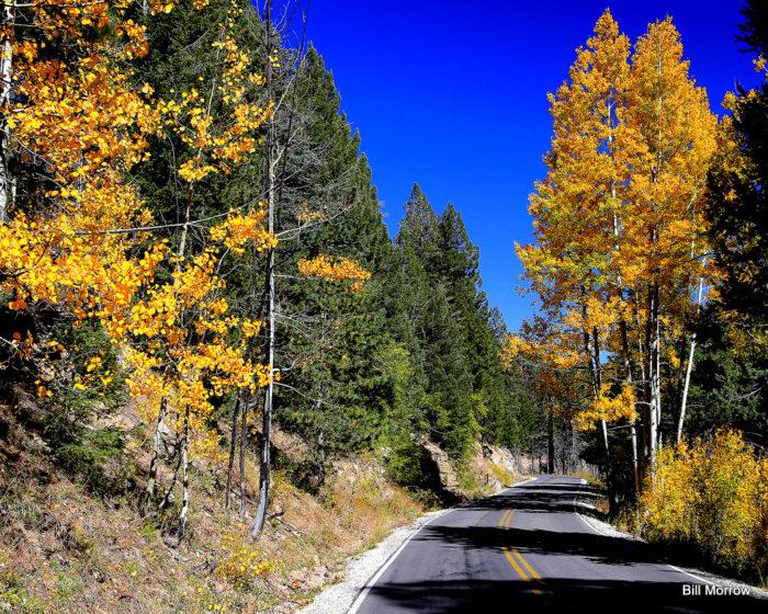 7. Tucson, Mount Lemmon Highway