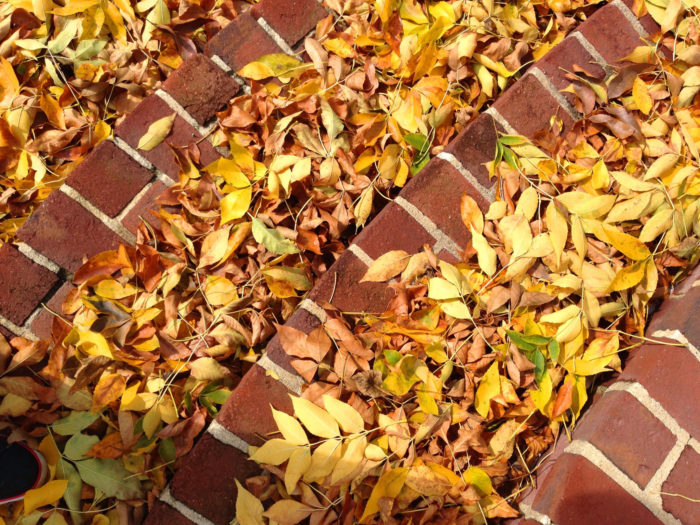 Part of the charm comes from the visual appeal of bricks against the colors of autumn.