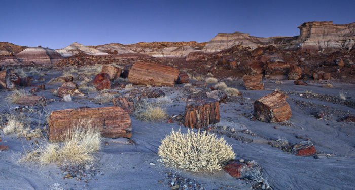 8. Petrified Forest National Park