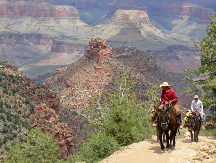 4. Hike Bright Angel Trail, one of the most popular trails that leads hikers down into the canyon.