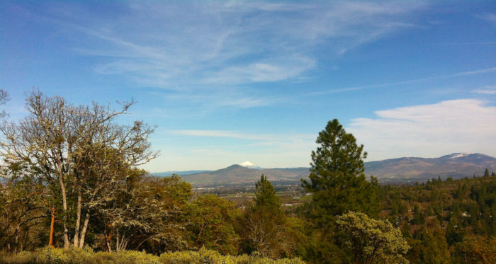 ...taking a hike along the beautiful Woodland Trails...