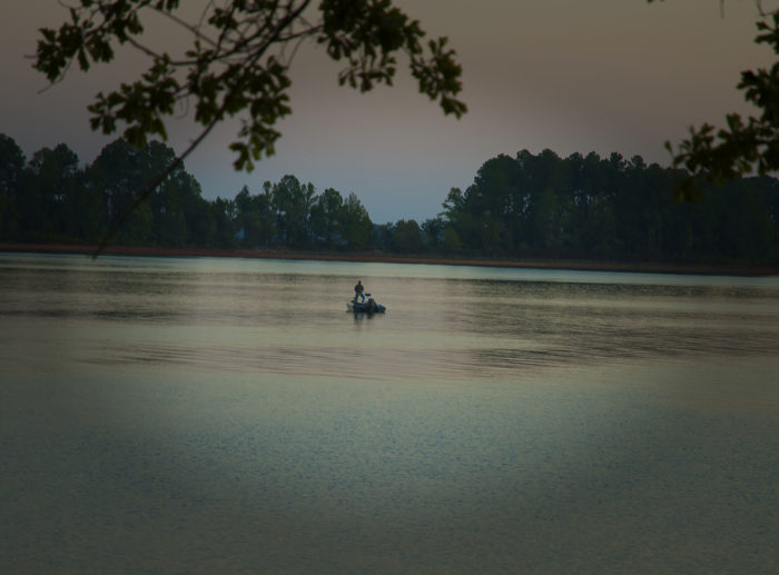 Lake hartwell is one of the most beautiful and peaceful for Lake hartwell fishing hot spots