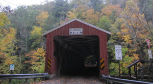 7 Country Roads Near Pittsburgh That Are Pure Bliss In The Fall
