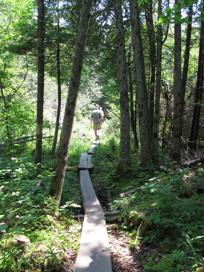 There are three main trails that make up the recreation opportunities in the area.