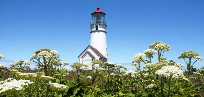 7. Cape Blanco Lighthouse