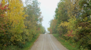 6 Country Roads In North Dakota That Are Pure Bliss In The Fall