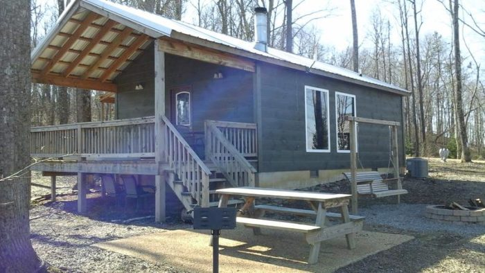 8. The Wildflower (Grant Summit Cabins) - Bryant, AL