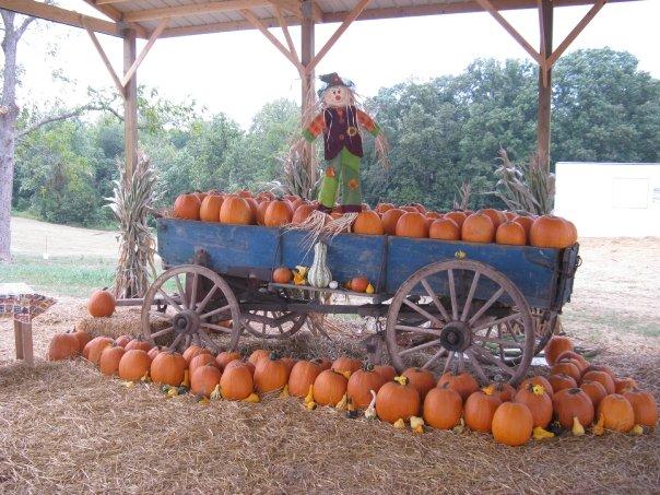 3. Deere Farms - Laneville
