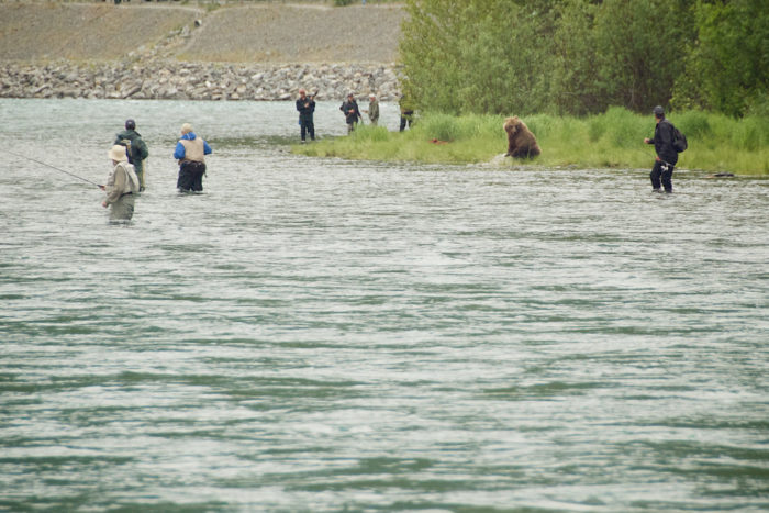 A bear will more than likely steal your fishing spot. And you just have to deal with it.