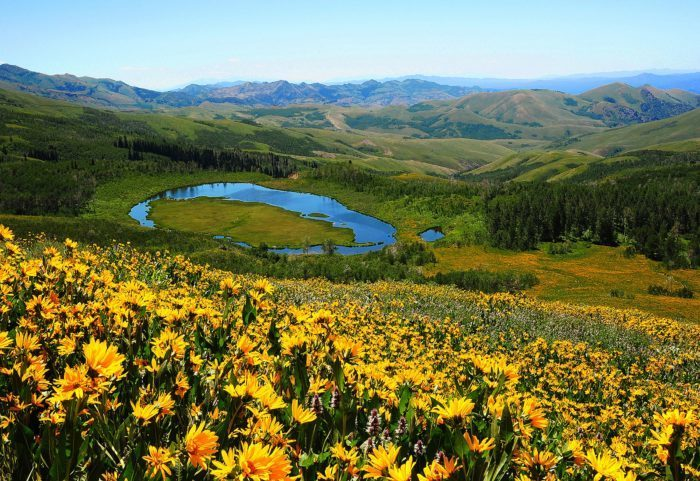 Tucked away in northern Elko County, Jarbidge Wilderness covers 113,000 acres of high mountains and deep canyons.