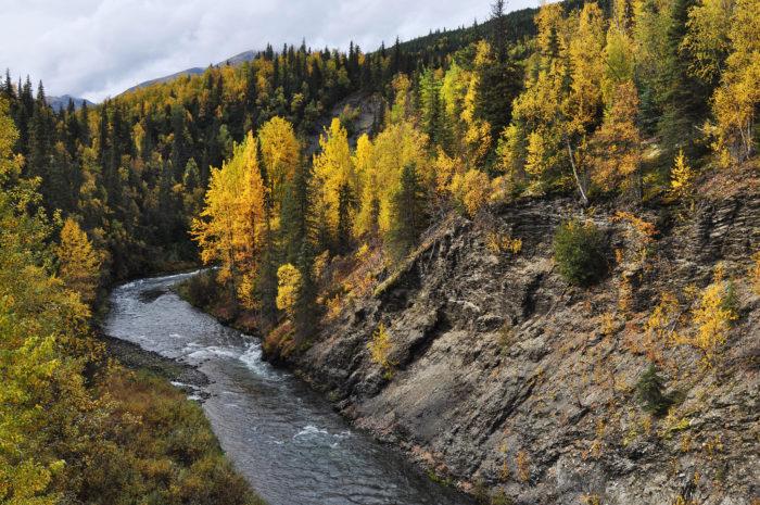 Hop on the Seward Highway and head south to the beautiful town of Seward, Alaska on the Kenai Peninsula.
