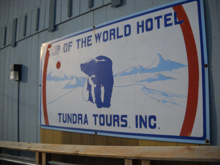 The midnight sun attracts the tourism industry as well. The wildlife viewing in the area primarily consists of marine life such as whales, seals, polar bears and walruses.