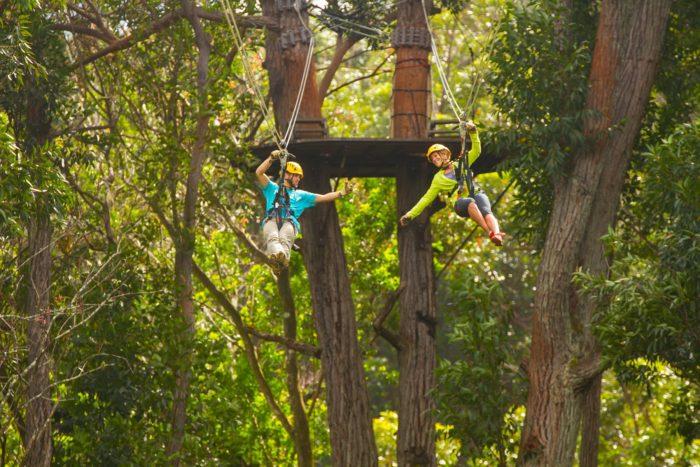 For an adrenaline rush: Kohala Zipline