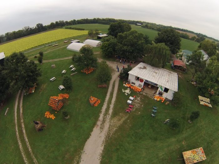 3. Happy Jack's Pumpkin Farm, Frankfort