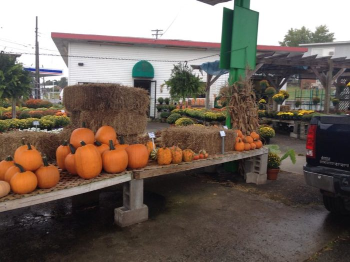8. Hinton's Orchard and Farm Market, Hodgenville