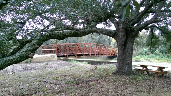 Couturie Forest is also home to the highest point of elevation in New Orleans--Laborde Mountain.