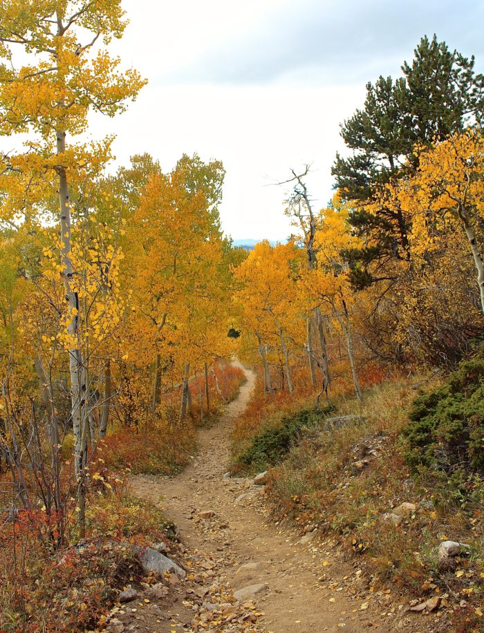 ...the aspen-rimmed path to peace.