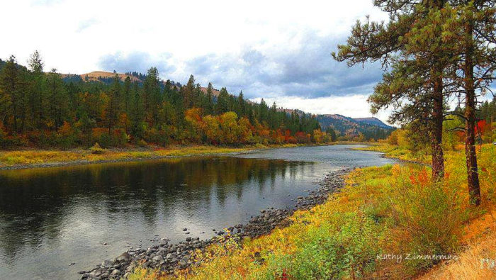 Or simply immerse yourself in the beauty up close and personal from the edge of Clear Creek or the vibrant Clearwater River.