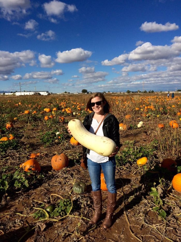 Pumpkins must be purchased separately, but prices are very reasonable.