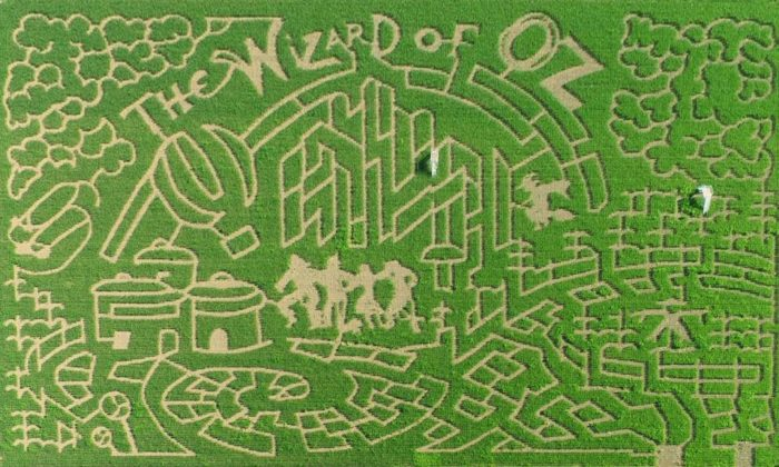 This family owned and operated endeavor features complex corn mazes that are also works of art. The maze covers 16 acres. Here is this year's design.