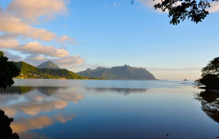 You can go on a kayaking excursion or boat trip to the nearby Kaneohe sandbar...