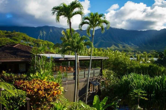 Surrounded by palm trees and nestled into a quiet residential neighborhood just five miles from Kaneohe Town and eleven miles from Kailua Beach, Paradise Bay resort is a low-key haven for anyone looking to get away from it all.