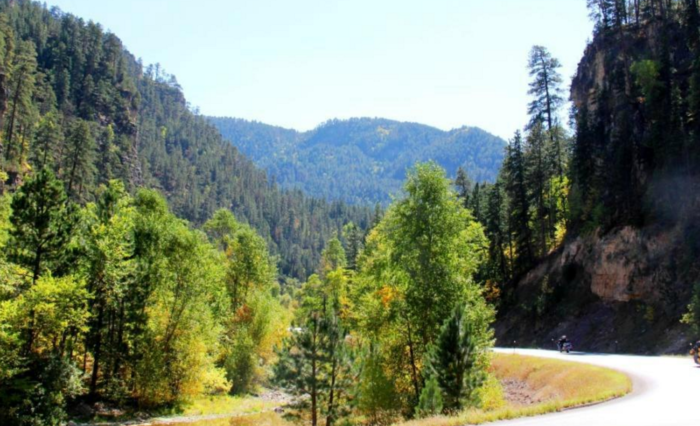 After reaching Hermosa, head west towards Custer - this will bring you through Custer State Park.