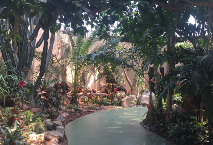 But it's more than just a zoo - their botanical gardens fill the park with beauty.