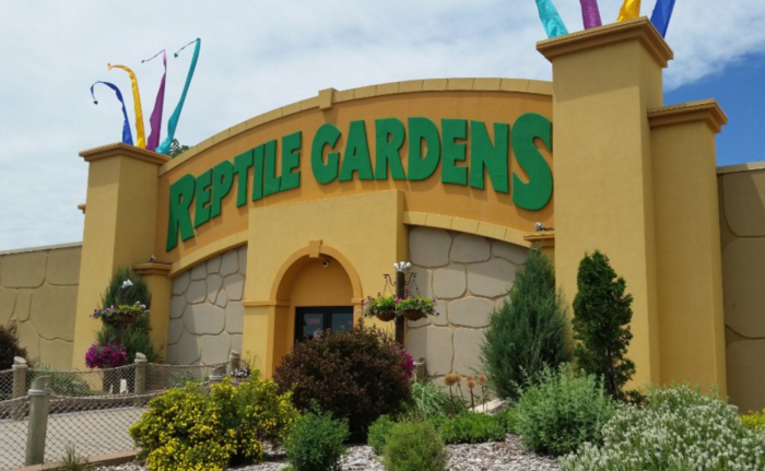 The Reptile Gardens claims the Guinness Book of World Records title of World's Largest Reptile Zoo.