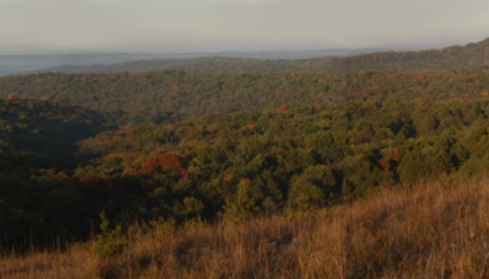 This 12,314-acre wilderness area is considered the oldest wilderness area in Missouri.