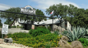 The Unique Park Everyone In Texas Should Visit At Least Once