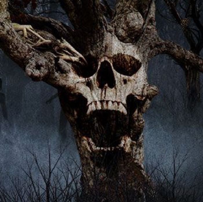 Have you ever experienced the haunted hike in Leesville, LA, known as the Tree Farm Massacre?