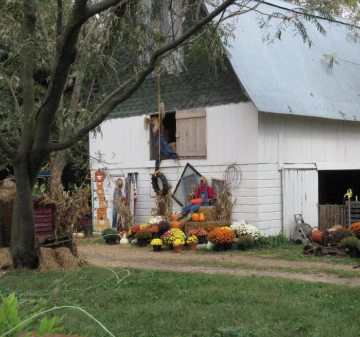 4. Pickin' Patch Farm - Marionville
