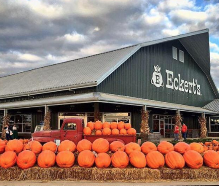 7. Eckert's Country Store & Farms - Belleville