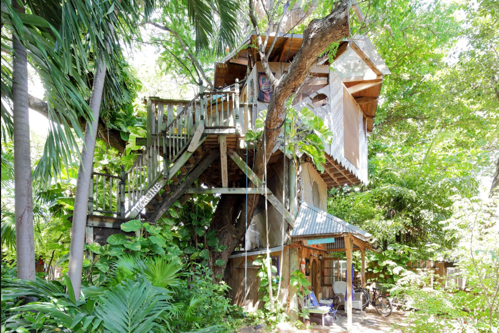 Book An Unforgettable Night In This Incredible Tree House