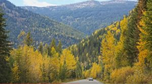 7 Country Roads In Idaho That Are Pure Bliss In The Fall