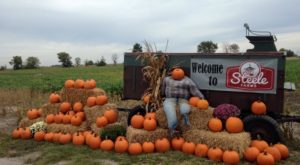 These 10 Charming Pumpkin Patches In Indiana Are Picture Perfect For A Fall Day