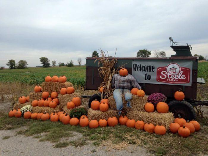 4. Steele Farms - Decatur