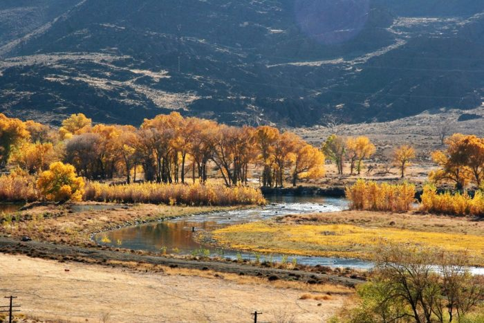 5. Absorb the fall color along the Truckee River from Interstate 80 (Between Sparks and Fernley).