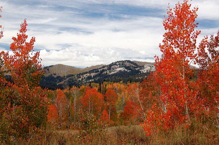 3. Oregon Trail-Bear Lake Scenic Byway